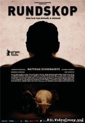 Фильм: Болван / Rundskop (2011)