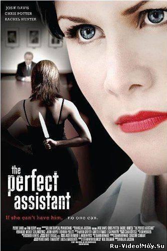 Фильм: Само совершенство / The Perfect Assistant (2008)